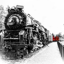 Out of service by Calvin Morgan - Transportation Trains ( high key, michigan, grand haven, selective color, train )