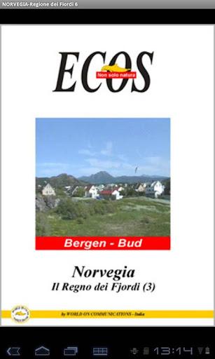 NORVEGIA-Regione dei Fiordi 6