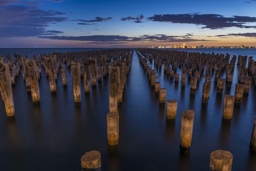 Princes Pier by Dimitrije Antonijevic - Landscapes Waterscapes ( melbourne, sunset, sea, pier, victoria, princes )