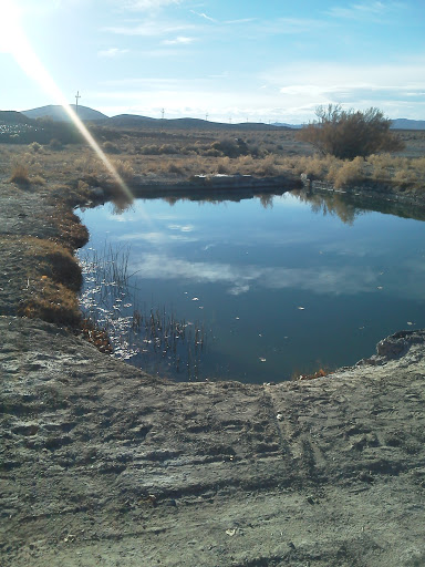 Alkali Springs