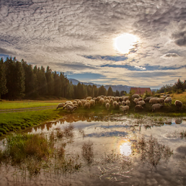 At the mountain pond by Stanislav Horacek - Landscapes Weather