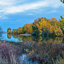 Majestic Quail Lake  by James Martinez - Nature Up Close Trees & Bushes ( fall, color, colorful, nature )