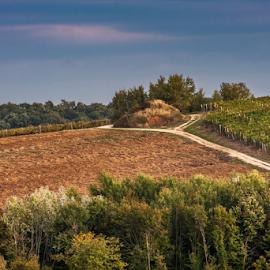 by Dalibor Điri - Landscapes Prairies, Meadows & Fields