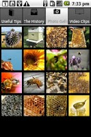 Screenshot of Beekeeping