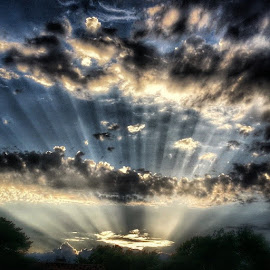 heavens light by Angela Masters - Instagram & Mobile Android
