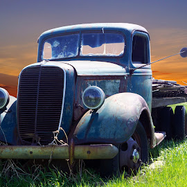Old Ford Truck by Joerg Schlagheck - Transportation Automobiles ( old, twowheelsandacamera., alberta, truck, good, rusty, ford,  )