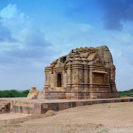 Architech of Past by Mahendra Chauhan - Landscapes Deserts ( architech of past )