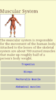 Screenshot of Human Body - Anatomy