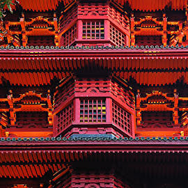 Japanese by Constantinescu Adrian Radu - Buildings & Architecture Public & Historical