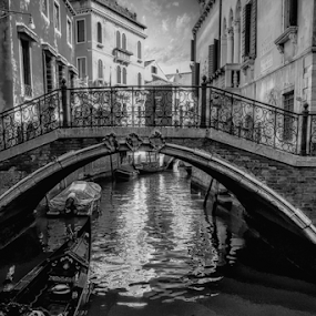 by Doreen Rutherford - Black & White Buildings & Architecture ( italy 2014 )