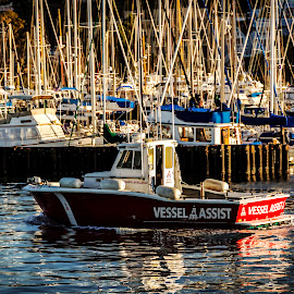 Tiburon Marina by Diane Clontz - Novices Only Objects & Still Life ( vessel assist, waterscape, boats, marincounty, tiburon )
