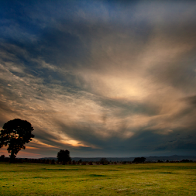 Grass field by Cristobal Garciaferro Rubio - Landscapes Prairies, Meadows & Fields ( clouds, grass field, grass, sunset )