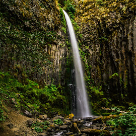 Dry Falls by James Case - Landscapes Waterscapes ( waterfalls, nature, creeks, rock formation, landscapes, basalt )