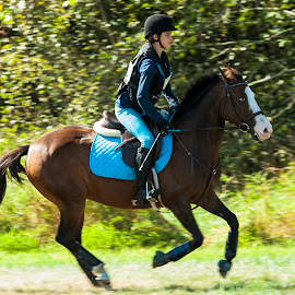 Riding to Win by Garry Dosa - Sports & Fitness Other Sports ( 2014, autumn, riding, horse, action, sports, september )