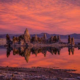 Mono Morning by Jim Shafer - Landscapes Sunsets & Sunrises ( water, jim berryman-shafer, jim shafer, mono lake, tufa, mono, western images )