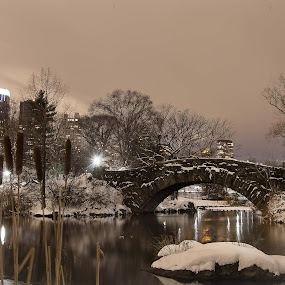 One Winter Night by Marc Brian Queyquep - City,  Street & Park  Night ( snow storm, lake, nyc, bridge, central park )