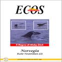 NORVEGIA - ISOLE VESTERÅLEN 3 icon