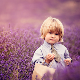 Picking Lavender is a Serious Business by Chinchilla  Photography - Babies & Children Toddlers ( countryside, shirt and tie, england, blonde, purple, little boy, beautiful, summer, cute, toddler, lavender )