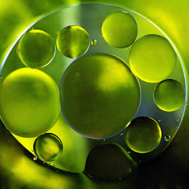 by Dipali S - Abstract Macro ( water, abstract, surface, ellipse, blister, bubbles, image, yellow, circle, oil, macro, liquid, pattern, fluid, color, droplet, background, drops, wet, transparent, objects, small, closeup, renewal, green, trees, forests, nature, natural, scenic, relaxing, meditation, the mood factory, mood, emotions, jade, revive, inspirational, earthly )