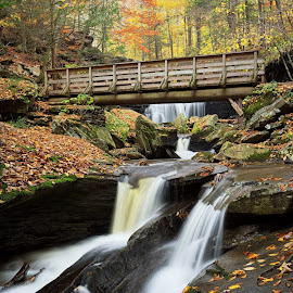 Crossing Kitchen Creek by Tim Devine - Landscapes Waterscapes ( falls trail, autumn, kitchen creek, glen leigh, pennsylvania, bridge, ricketts glen, fall, color, colorful, nature )