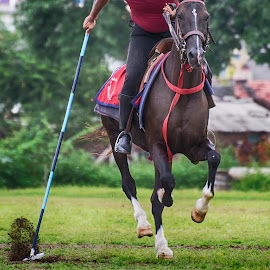 On the Mark.... by Jignesh Chauhan - Sports & Fitness Other Sports