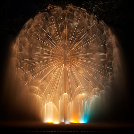 Dandelion Fountain by John Stocker - City,  Street & Park  Fountains ( loring park, water, minnesota, pool, minneapolis, fountain, long exposure, night, light, mist )