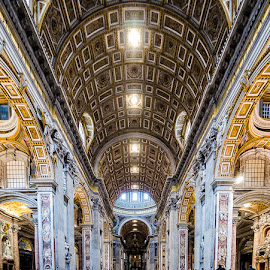 St. Peter's Cathedral by Matthew Haines - Buildings & Architecture Places of Worship