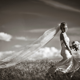 by Lindsay James - Wedding Bride ( girl, b&w, wedding, bride, pretty )