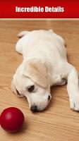 Screenshot of Dog Breeds, HD Catalog