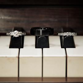 Piano Rings by Joseph Humphries - Wedding Details ( diamondring, piano, keys, photoideas, band, wedding, elegant, brideideas, diamond, rings, bride, groom, weddingideas )