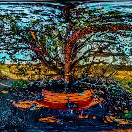 by Stephen Schwartzengraber - Digital Art Places