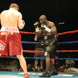 Ahunanya v Ibragimov by Stephen Jones - Sports & Fitness Boxing