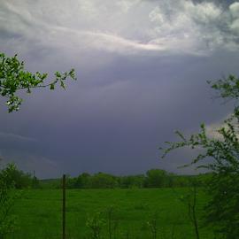 by Helen Harbison - Landscapes Weather (  )