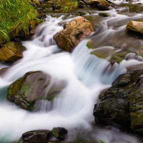 Steam by Jay Chen - Nature Up Close Water ( water, nature, flowing, creek, river, steam )