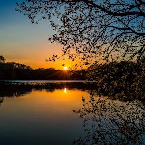 burnhole Cumbria by Gareth Fleming - Landscapes Sunsets & Sunrises ( cumbria, sunset, trees, pond,  )
