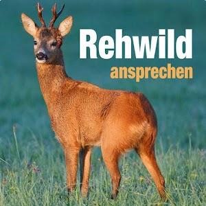 Cover art Rehwild ansprechen