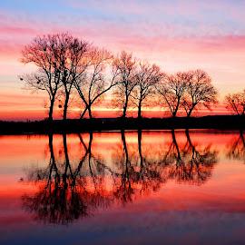 Sunrise on the magical lake..a. by Željko Salai - Landscapes Sunsets & Sunrises