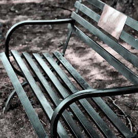 Bench by Rhonda Musgrove - Artistic Objects Furniture ( sofa, park, bench, seat, furniture, iron )