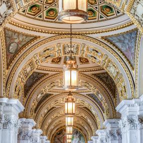 I Had A Dream by Dan Girard - Buildings & Architecture Public & Historical ( interior, historical, architecture, dangirardphotography, library of congress )