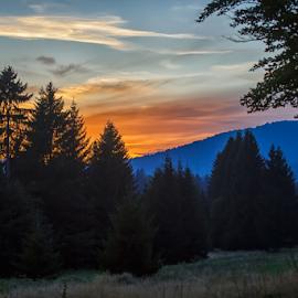 Forest sunset by Stanislav Horacek - Landscapes Forests