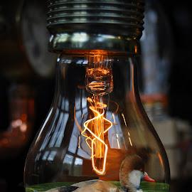 Duck Bulb by Marco Bertamé - Digital Art Things ( water, light buib, green, bulb, dick, filament, light, electric bulb,  )