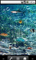 Screenshot of Nature sea Live Wallpaper