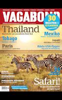 Screenshot of Vagabond