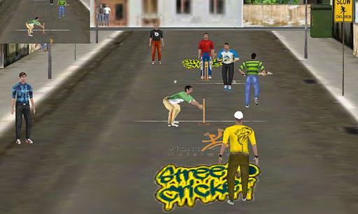 Street Cricket Pro - screenshot