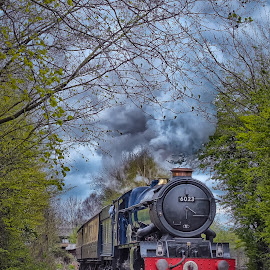 King Edward ll by Steve Dormer - Transportation Trains