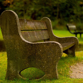 Empty Bench! by Hasan Mahmud Tipu - Artistic Objects Furniture ( benches, canada, stilllife, park, fall, city, public, bench, furniture, object )