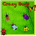 Crazy Bugs icon