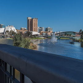 Adelaide View by Sean Heatley - City,  Street & Park  Skylines ( homeh, south australia, australia, blue sky background, holiday destination, adelaide, travel, public, city )