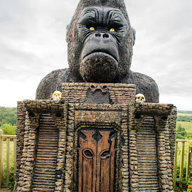King Kong having a bad day by Stephen Crawford - Artistic Objects Other Objects ( sculpture, model, sad, display, kong, papier mache, artwork, exhibit )