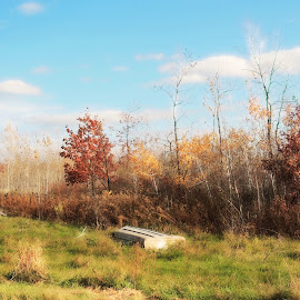 Boat ashore. by Carolyn Kernan - Landscapes Prairies, Meadows & Fields